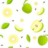 Modèle sans couture de vecteur de fruit lumineux Le fond blanc avec les pommes vertes Delicious, entières, tranche, demi, part Photos libres de droits