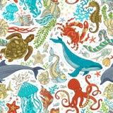 Modèle sans couture de vecteur de la vie marine sauvage illustration stock