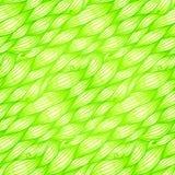 Modèle sans couture de vecteur de vagues d'herbe verte Photographie stock libre de droits