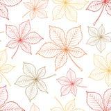 Modèle sans couture de vecteur des feuilles de châtaigne Photo libre de droits