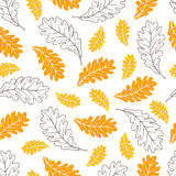 Modèle sans couture de vecteur des feuilles de chêne d'automne Photographie stock