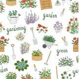 Mod?le sans couture de vecteur des outils de jardin color?s illustration de vecteur
