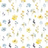 Modèle sans couture de vecteur floral d'aquarelle Photo stock