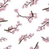Modèle sans couture de VECTEUR, Sakura Doodle Cartoon Branches, Cherry Blossom Oriental Background Photographie stock