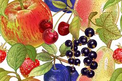 Modèle sans couture de vintage avec des fruits et des baies illustration stock