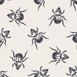 Modèle sans couture de vintage de scarabées Images stock
