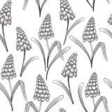 Modèle sans couture de vintage floral avec des fleurs de ressort Photographie stock libre de droits