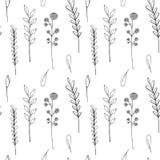 Modèle sans couture de wildflowers d'encre Pavot tiré par la main, bardane, blé, herbe, rose sauvage, camomille, bleuet, géranium illustration stock