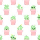 Modèle sans couture des cactus dans des pots roses sur le fond blanc Images stock