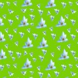Modèle sans couture des fleurs blanches sur un fond vert clair Photos libres de droits