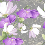 Modèle sans couture des fleurs sauvages Images libres de droits