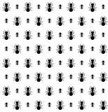 Modèle sans couture des fourmis dans la couleur noire et blanche illustration de vecteur