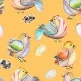 Modèle sans couture des oiseaux et des oeufs d'aquarelle, tiré par la main sur un fond orange Photographie stock libre de droits