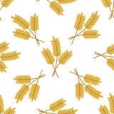 Modèle sans couture des oreilles d'orge ou de blé Photographie stock libre de droits