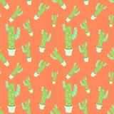 Modèle sans couture du cactus plat vert à la maison de vecteur dans le pot blanc Photographie stock libre de droits