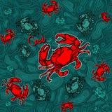 Modèle sans couture du crabe 1 Photo libre de droits