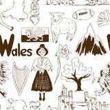 Modèle sans couture du Pays de Galles de croquis Photo stock