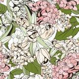 Modèle sans couture en pastel avec des tulipes et des hortensias Photographie stock