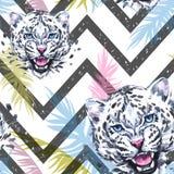 Modèle sans couture exotique d'aquarelle Léopards avec les feuilles tropicales colorées sur la texture géométrique animaux africa Photographie stock