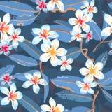 Modèle sans couture exotique floral tropical de vecteur Image libre de droits