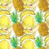 Modèle sans couture exotique tiré par la main de fruits tropicaux Photos libres de droits