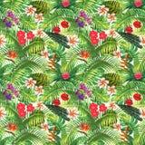 Modèle sans couture exotique tropical illustration de vecteur