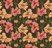 Modèle sans couture floral Image libre de droits