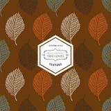 Modèle sans couture floral avec bleu grunge d'automne, orange, vert, Images stock