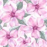 Modèle sans couture floral avec les fleurs 4 de rose Photo stock