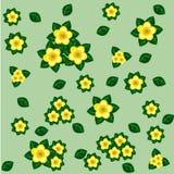 Modèle sans couture floral avec les fleurs et les feuilles jaunes de vert Photographie stock libre de droits