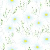 Modèle sans couture floral avec les fleurs sensibles, main-dessin Illustration de vecteur Daisy Themed Repeating Pattern Images libres de droits