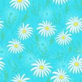 Modèle sans couture floral avec les fleurs sensibles, main-dessin Illustration de vecteur Daisy Themed Repeating Pattern Images stock