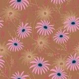 Modèle sans couture floral avec les fleurs sensibles, main-dessin Illustration de vecteur Daisy Themed Repeating Pattern Photos libres de droits