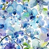 Modèle sans couture floral d'aquarelle avec des fleurs d'orchidée image libre de droits