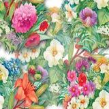 Modèle sans couture floral d'aquarelle avec des roses et des Wildflowers Photo libre de droits