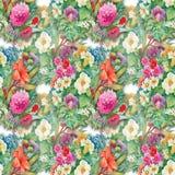 Modèle sans couture floral d'aquarelle avec des roses et des Wildflowers Image stock