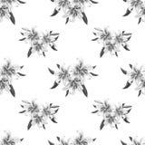 Modèle sans couture floral de beau lis noir et blanc Bouquet des fleurs Impression florale Dessin de marqueur illustration de vecteur