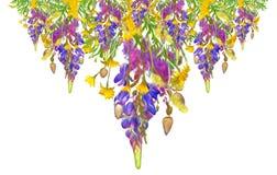 Modèle sans couture floral de cadre stylisé - bouquet pour l'invitation Photo libre de droits