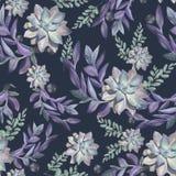 Modèle sans couture floral de cru avec des succulents d'aquarelle illustration libre de droits