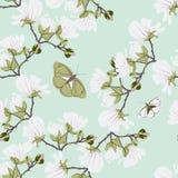 Modèle sans couture floral de magnolias Les motifs de floraison botaniques en bon état de vanille ont dispersé aléatoire Texture  Photo stock