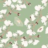 Modèle sans couture floral de magnolias Les motifs de floraison botaniques orientaux ont dispersé aléatoire Texture sans joint de Images libres de droits
