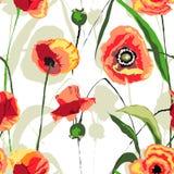 Modèle sans couture floral de pavots de coucher du soleil Photo stock