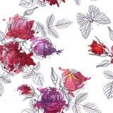 Modèle sans couture floral de vecteur de vintage Photos stock