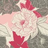 Modèle sans couture floral doux avec tiré par la main Images libres de droits