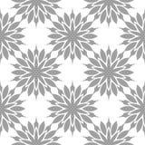Modèle sans couture floral gris sur le fond blanc Photos libres de droits