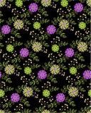 Modèle sans couture floral sur le fond noir Photos libres de droits