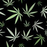 Modèle sans couture - fond de feuille de cannabis Images stock