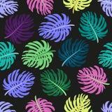 Modèle sans couture mignon avec les palmettes tropicales illustration stock