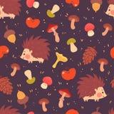Modèle sans couture mignon de hérissons et de champignons Image stock