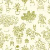 Modèle sans couture monochrome avec des usines s'élevant dans les planteurs dessinés avec des courbes de niveau sur le fond clair illustration libre de droits